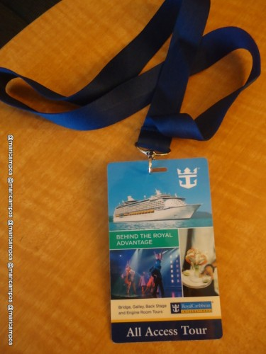Oasis of the Seas All Access Tour